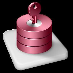 Color MS Access icon