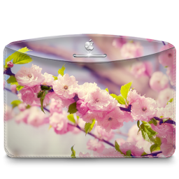 自然の桜の木のフォルダアイコン しぜんのさくらのきのふぉるだあいこん Ico Png Icns 無料のアイコンをダウンロード