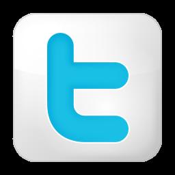 社会的なツイッター ボックスの白いアイコン しゃかいてきなついった ぼっくすのしろいあいこん Ico Png Icns 無料のアイコン をダウンロード