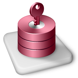 Color MS Access icon